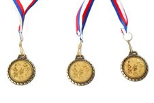 Free Medals For Dogs Stock Photography - 15423362