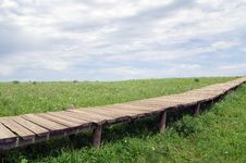 Free Plank Road On The Meadow Stock Photos - 15424223