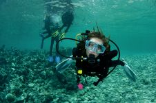Female Scuba Diver Stock Images