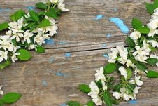 Flowering Branches On A Wooden Background Stock Image