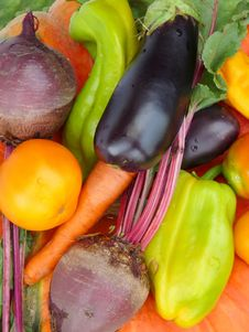 Free Fresh Vegetables . Royalty Free Stock Images - 15424629