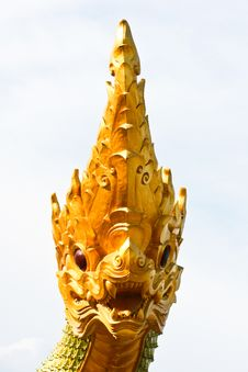 Free Naga Face (Front View) Royalty Free Stock Image - 15426056