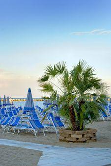 Free Palm Tree And Beach Scene Stock Photo - 15427160