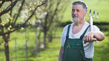 Free Man Gardening In His Garden Royalty Free Stock Photos - 15427218