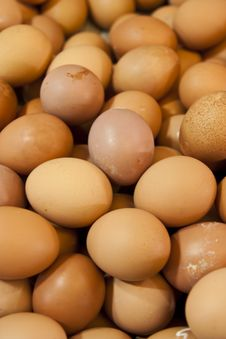 Free Brow Eggs Royalty Free Stock Photos - 15428518