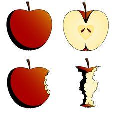 Free Four States Of Apples Stock Photos - 15429613