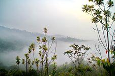 Free Morning Mist 7 Stock Photos - 154274993