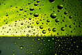 Free Many Water Drops Royalty Free Stock Photography - 15438077