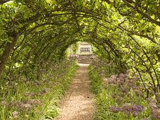 Free Pathway To Bench Beneath Leafy Arch Royalty Free Stock Photo - 15431965