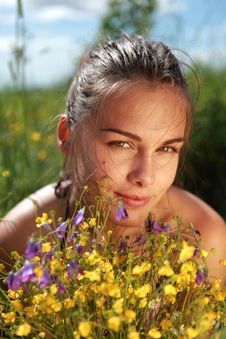 Free Portrait Of A Beautiful Girl With Flowers Royalty Free Stock Photography - 15432267