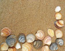 Free Shells Frame Stock Photo - 15435520