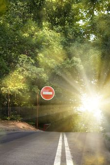 Road  Asphalted  Sunrise Stock Image