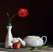 Still Life With A Tulip Stock Photo