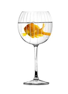 Free Gold Fish Swimming In Big Stylish Goblet Royalty Free Stock Photography - 15439617