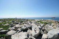 Free Machias Seal Island Royalty Free Stock Images - 15442919