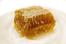 Free Honeycomb Royalty Free Stock Image - 15445496