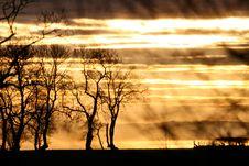 Free Golden Sunset Stock Photography - 15447742