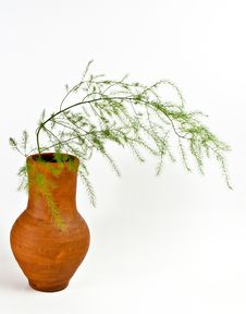 Jug With Decorative Grass Stock Image