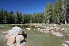 Pond At Yosemite Stock Photos