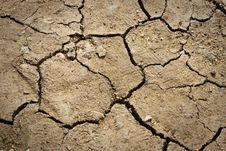 Free Dry Cracked Soil Stock Image - 15448551