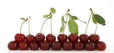 Free Fresh Cherries Royalty Free Stock Photography - 15448737