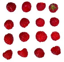 Free Raspberries Stock Photography - 15448902
