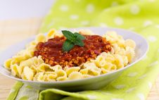 Free Spaghetti Serve On Plate With Chopped Meats Royalty Free Stock Images - 15448959