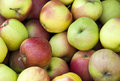 Free Fresh Apples On The Market Stock Images - 15455614
