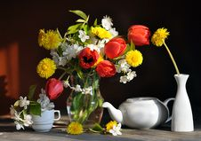 Free Still Life With Tulips And Dandelions Stock Photography - 15452572