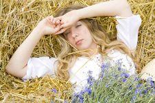 Free Awakening Stock Image - 15452781