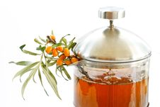 Free Tea And Sea Buckthorn Royalty Free Stock Photo - 15454045