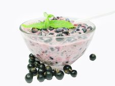 Bowl Of Yogurt With Black Currant Stock Photo