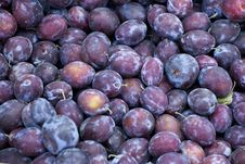Free Fresh Plums On The Market Royalty Free Stock Images - 15455609