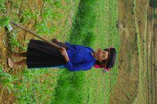 Black Hmong Woman Royalty Free Stock Image