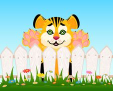Cartoon Smiling Tiger After A Fence Stock Images