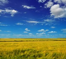 Free Summer Plain Landscape Royalty Free Stock Photo - 15459985