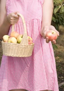 Free Girl And Apples Royalty Free Stock Photos - 15460688