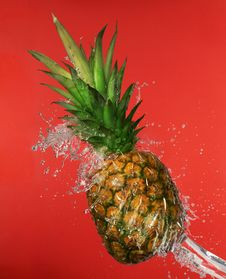 Free Pineapple In Water Splashes Royalty Free Stock Photo - 15464405