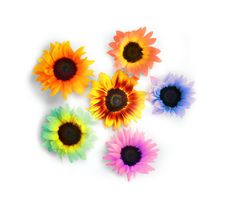 Free Abstract Sunflowers Royalty Free Stock Images - 15465019