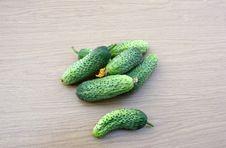 Free Cucumbers Royalty Free Stock Image - 15465796