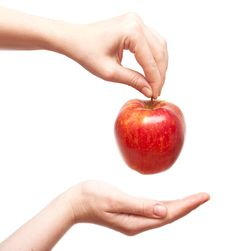 Free Red Apple In Hands Stock Photos - 15465883