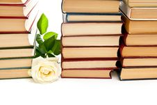 Free Rose And Books Stock Photos - 15466223