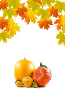 Maple Leaves And Pumpkins Stock Photo