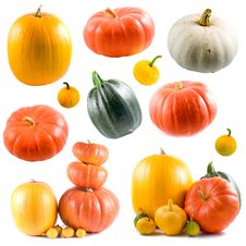 Free Collection Of Colorful Pumpkins Royalty Free Stock Images - 15466489