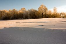 Free Winter Days Royalty Free Stock Image - 15466926