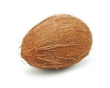 Free Coconut Isolated Royalty Free Stock Photos - 15469708