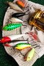 Free Plug For Fishing Royalty Free Stock Photo - 15479075