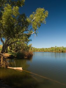 NW Australian Creek Royalty Free Stock Photo