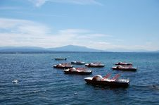 Free Pedal Boats . Stock Photography - 15470982