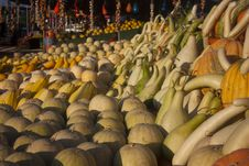 Different Pumpkins On Market Royalty Free Stock Photography